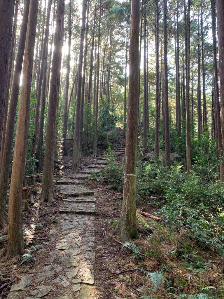 便石山の登山道はじめ