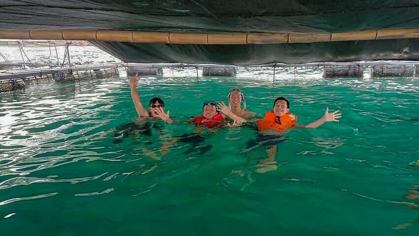 漁師体験 鯛の生簀泳ぎ