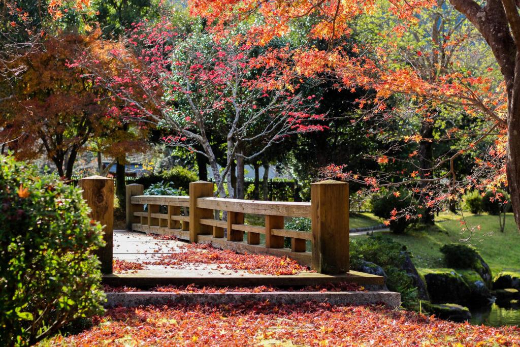 銚子川付近 観光スポット 種まき権兵衛の里 秋の風景2