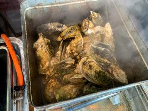 オイスターファーム山善 蒸し牡蠣 蒸し場の様子1