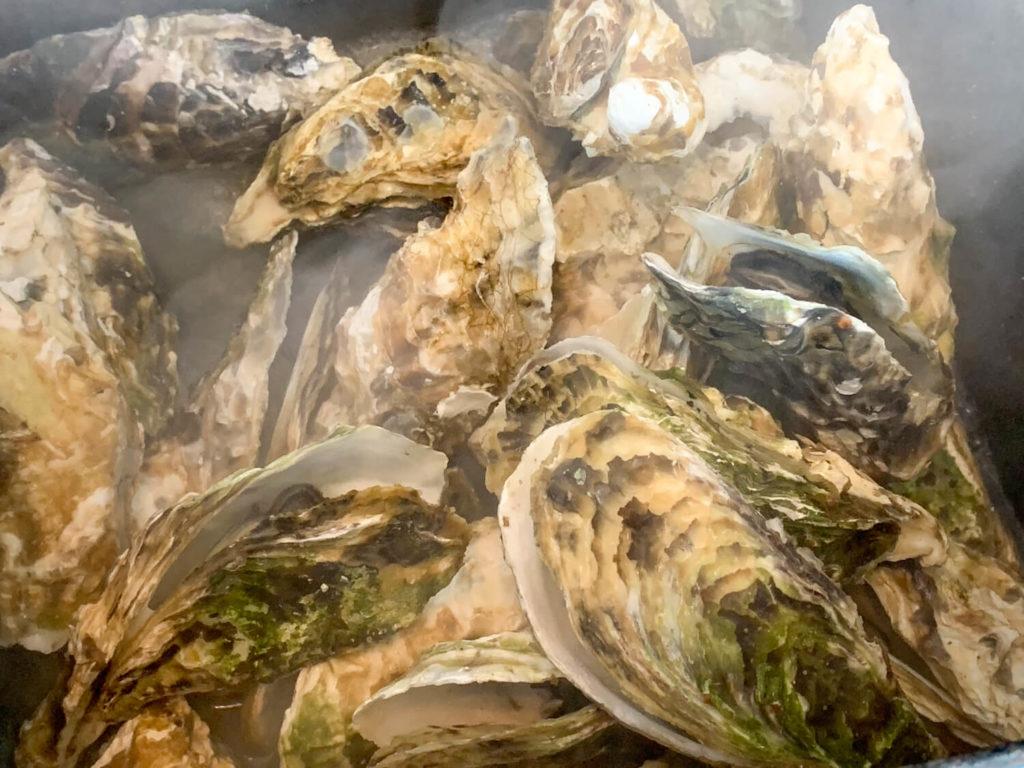 オイスターファーム山善 蒸し牡蠣 蒸し場の様子2