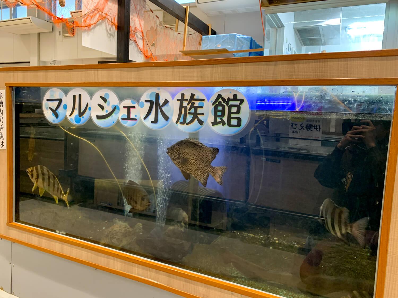 三重県鳥羽市 鳥羽マルシェ水族館