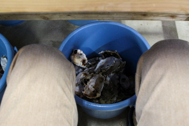 鳥羽答志島桃取町の牡蠣小屋優良水産17