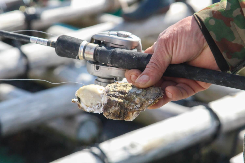 Anchor. 漁師の貸切アジト 牡蠣でクロダイ釣り