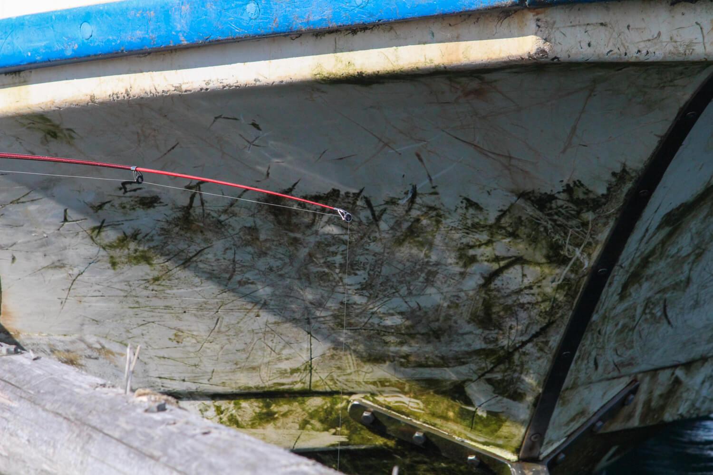 Anchor. 漁師の貸切アジト 牡蠣でクロダイ釣り2