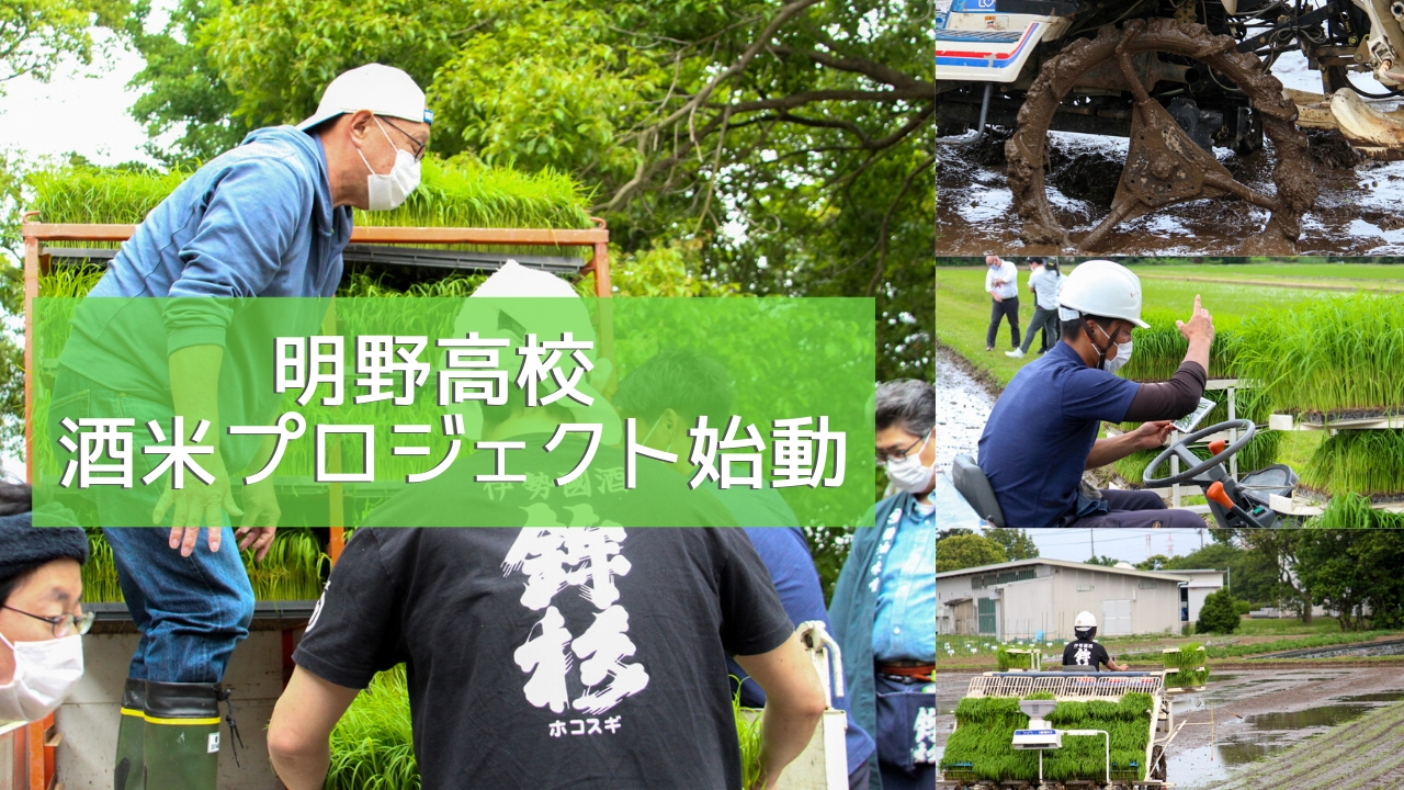 akekoumai_yuminariho